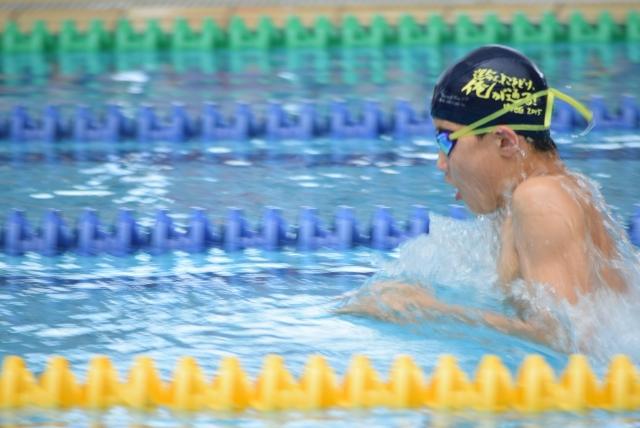 【中学生】平泳ぎの平均タイム【距離別、男女別】
